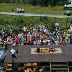 25 lat osiedla rzaka krakow festyn rodzinny 50 150x150 - 25 lat Osiedla Rżąka - galeria zdjęć z festynu