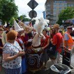 pochod lajkonika krakow 2017 115 150x150 - Pochód Lajkonika 2017 - galeria ponad 700 zdjęć!