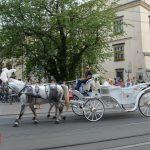 pochod lajkonika krakow 2017 479 1 150x150 - Pochód Lajkonika 2017 - galeria ponad 700 zdjęć!