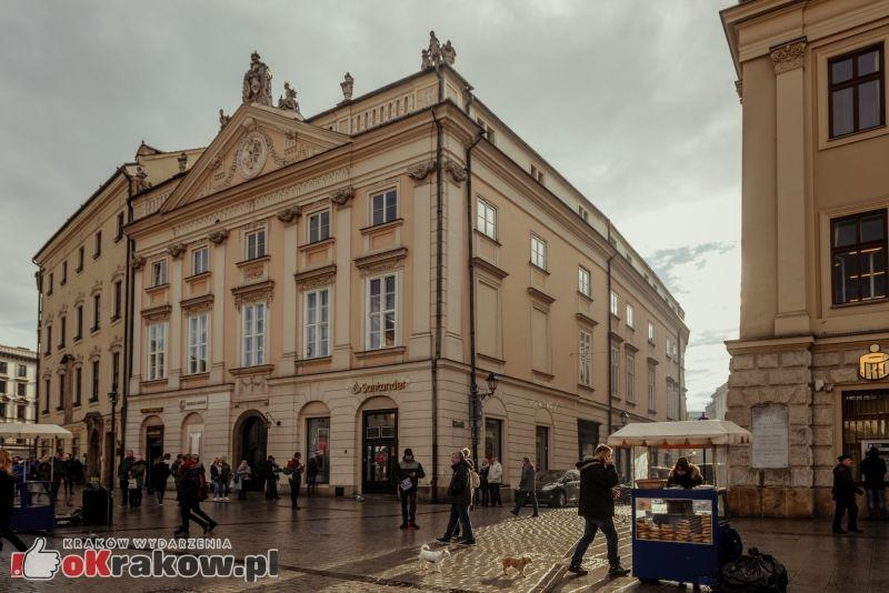 palac potockich w krakowie fot. k. schubert mik 2018 7 - XXI Małopolskie Dni Dziedzictwa Kulturowego