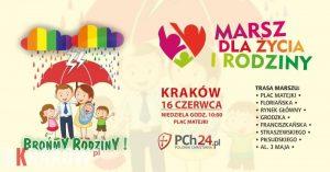 marsz dla zycia i rodziny krakow 2019 300x157 - Cały Kraków idzie razem! Dla życia i rodziny (16 czerwca 2019)!