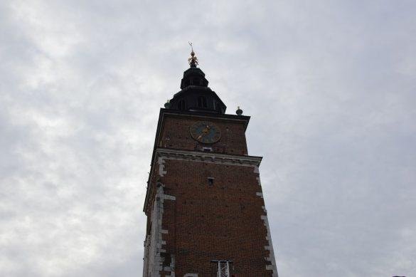 orszak 62 1 585x389 - Orszak Trzech Króli Kraków 2020 Galeria Zdjęć z Orszaku (czerwonego)