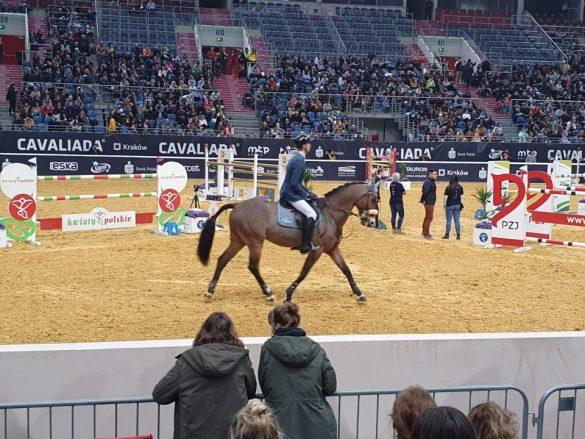 cavaliada tauron arena krakow 2020 4 585x439 - Dziś ostatni dzień Cavaliady na Tauron Arenie w Krakowie