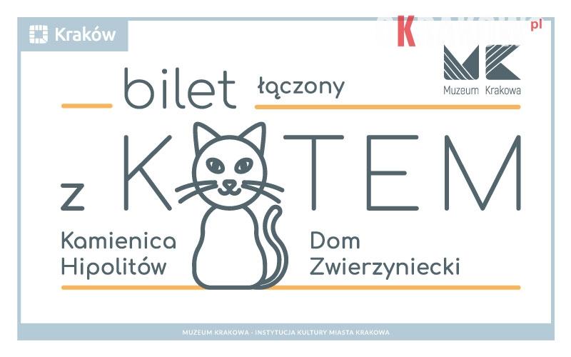 Kocie ścieżki w Muzeum Krakowa, czyli Bilet z kotem od soboty w sprzedaży