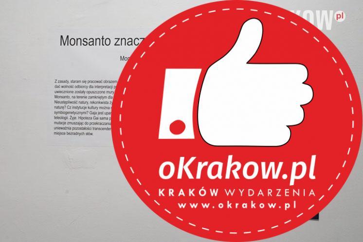 sdc6646 - Monsanto znaczy Minha santidade - wystawa Moniki Krzynówek