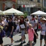 miasto krakow smoki 192 150x150 - Smoki Kraków - Wielka Parada Smoków w Krakowie