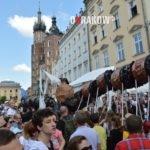 miasto krakow smoki 256 150x150 - Smoki Kraków - Wielka Parada Smoków w Krakowie