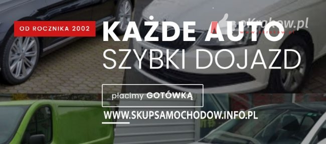 skupsamochodow2 650x288 - Auto Skup, Gotówka Natychmiast, Dojazd do Klienta GRATIS